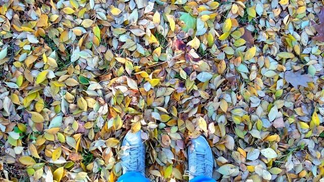 migliori-scarpe-da-passeggio